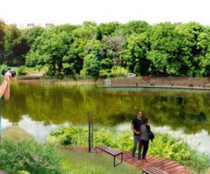 От оврага до пруда: зону для благоустройства саратовцам предлагают выбрать вслепую