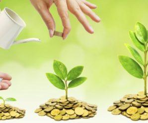 Центр поддержки предпринимательства свозит саратовский бизнес на выставки и дорастит до партнеров корпораций