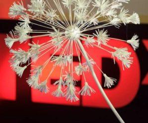 TEDxGagarinaSt: вкус к творчеству и коллективная память