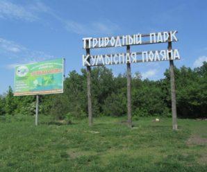 Саратовский эколог Пицунова пожалуется в прокуратуру на чиновников минприроды по итогам слушаний о Кумысной поляне