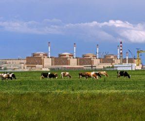 Отходы Балаковской АЭС будут сортировать на полигоне под навесом