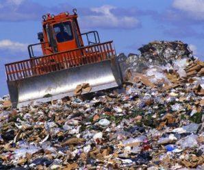Балаковский бизнес: регоператор намеренно не заключает с нами договора на вывоз мусора
