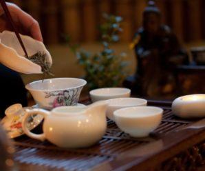 Выходные в Саратове: путешествие внутрь человека, чай из правильных чашек и новая инсталляция в складах Рейнеке