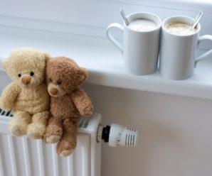 В Саратовской области на индивидуальное отопление переведено 916 квартир, установлено 12 блочных котельных