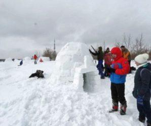 Жизнь в снегу: на Кумысной поляне в Саратове вырос городок эскимосских домов-иглу