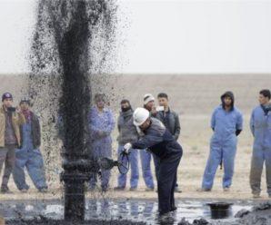 У саратовского «ЛукБелОйл» забил нефтяной фонтан на берегу Волги